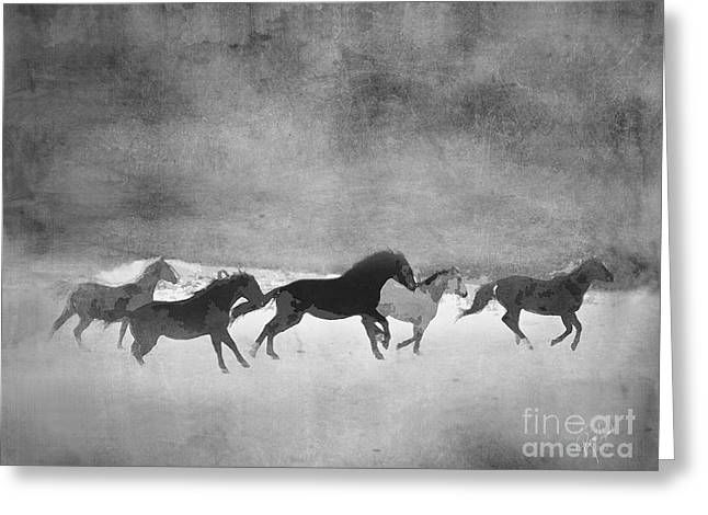 Expressionist Equine Greeting Cards - Galloping Herd Black and White Greeting Card by Renee Forth-Fukumoto