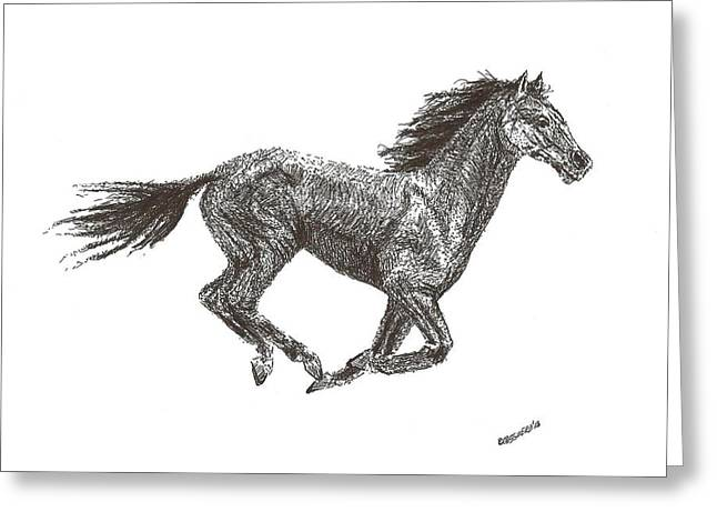 Horse Images Drawings Greeting Cards - Galloping  Greeting Card by Mario  Perez
