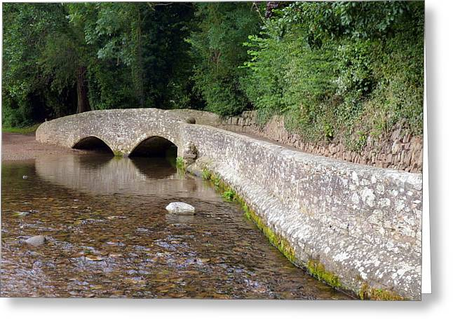 Packhorse Greeting Cards - Gallox Bridge near Dunster Greeting Card by Carla Parris