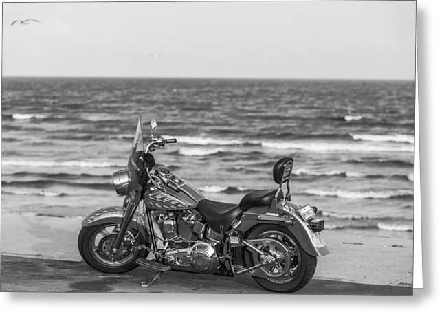 Galveston Greeting Cards - Galveston Harley Davidson Greeting Card by John McGraw