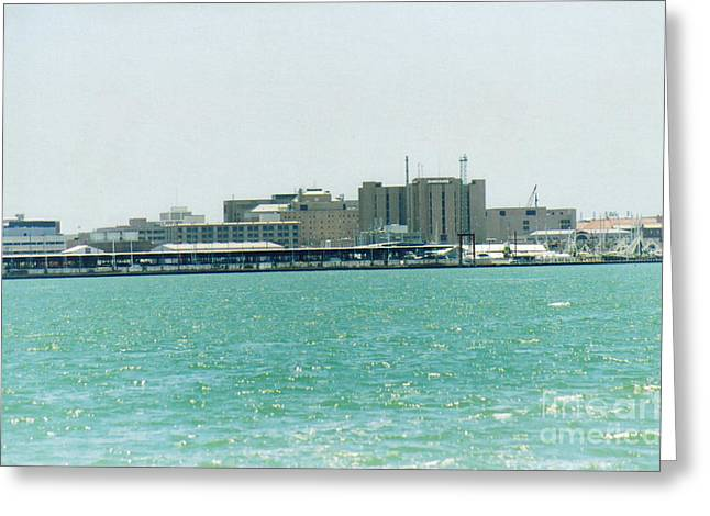 Galveston Greeting Cards - Galveston Island Greeting Card by Ruth  Housley