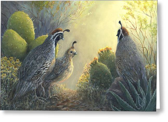 Giclee Cactus Greeting Cards - Gambels Quail - Early Light Greeting Card by June Hunt