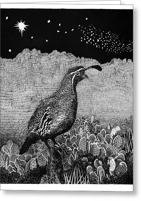 Universities Drawings Greeting Cards - Gamblels Quail Lucy in the sky Greeting Card by Jack Pumphrey