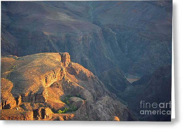 Beauty In Nature Greeting Cards - Gand Canyon Plateau Point Illuminated at Dawn Greeting Card by Shawn O