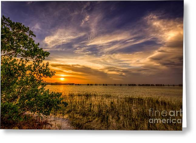 Florida Bridge Greeting Cards - Gandy Lagoon Greeting Card by Marvin Spates