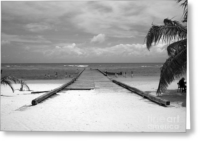 Inverse Greeting Cards - Gangplank of Perfection Black and White Greeting Card by Heather Kirk