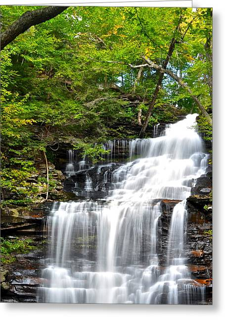 Plunging Greeting Cards - Ganoga Falls Ricketts Glen Greeting Card by Frozen in Time Fine Art Photography