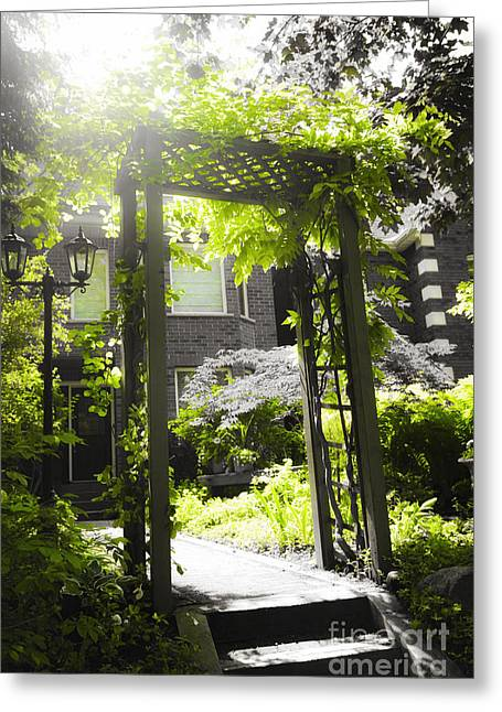 Summer Landscape Greeting Cards - Garden arbor in sunlight Greeting Card by Elena Elisseeva