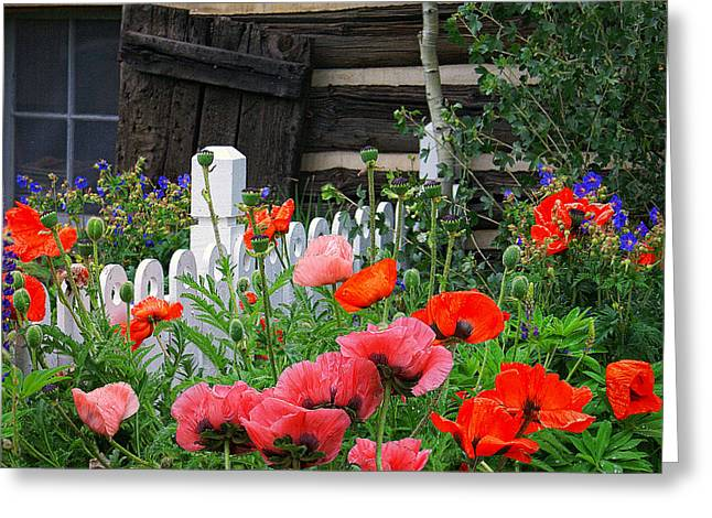 Garden At The Cabin Greeting Card by Priscilla Burgers