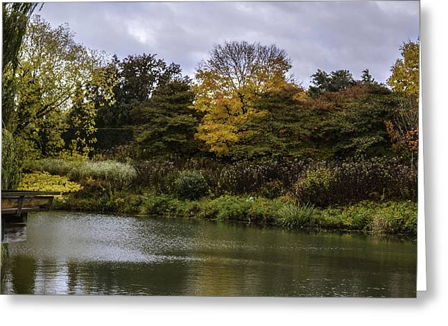 Chicago Botanic Garden Greeting Cards - Garden Autumn Colors Greeting Card by Julie Palencia