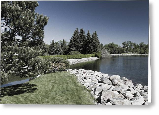Infer Greeting Cards - Garden by the Lake Inferred Colourize  Greeting Card by Dan Panattoni