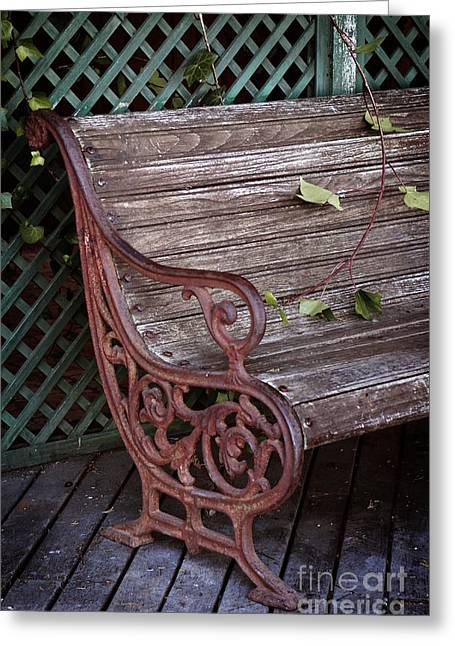 Forge Greeting Cards - Garden Chair Greeting Card by Carlos Caetano