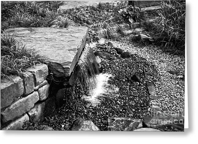 Garden State Greeting Cards - Garden Fountain mono Greeting Card by John Rizzuto