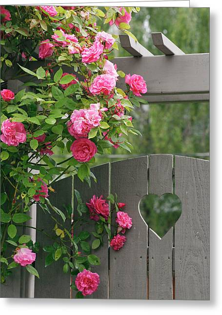 Garden Gate With Roses Growing Greeting Card by Jaynes Gallery