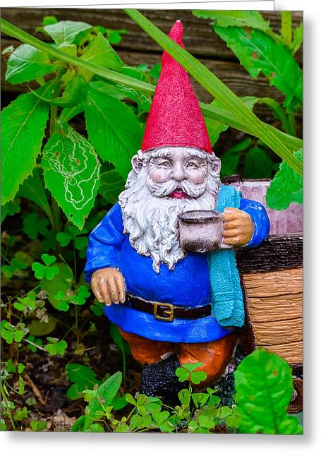 Pixy Greeting Cards - Garden Gnome Greeting Card by Brian Stevens