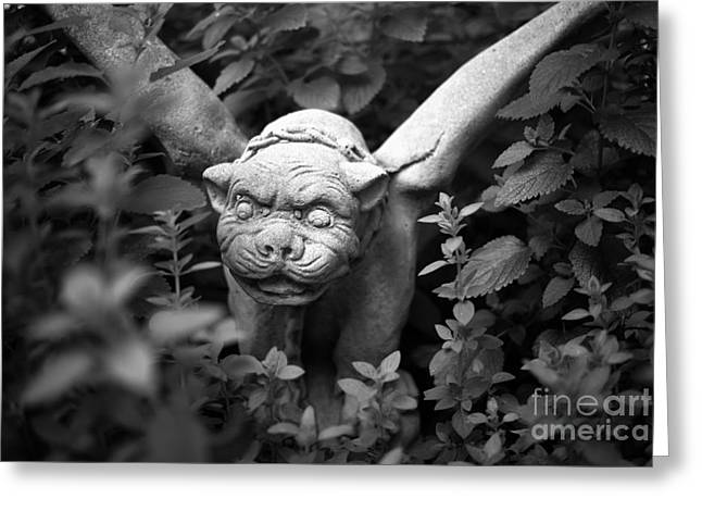 Balm Greeting Cards - Garden Gnome Greeting Card by Greg Ahrens