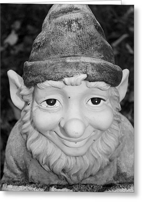 Duende Greeting Cards - Garden Gnome Greeting Card by Karinna Marvill