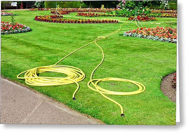 Garden Scene Photographs Greeting Cards - Garden hosepipes Greeting Card by Tom Gowanlock