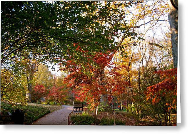 Cheekwood Gardens Greeting Cards - Garden in Autumn Greeting Card by Donna Melton