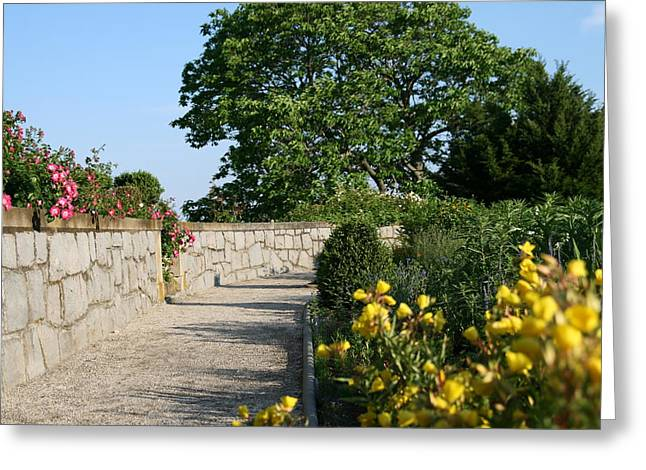 Natures Photos Greeting Cards - Garden Landscape Greeting Card by Neal  Eslinger