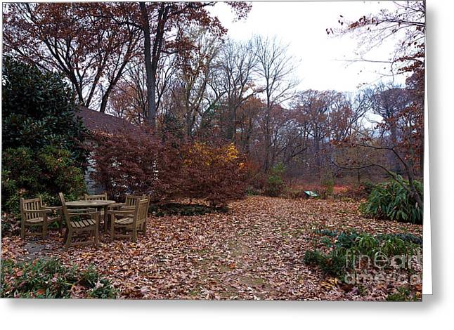 Garden State Greeting Cards - Garden Leaves Greeting Card by John Rizzuto
