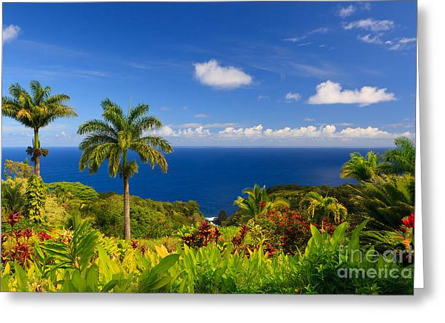 Pacific Ocean Prints Greeting Cards - Garden of Eden - Maui Greeting Card by Henk Meijer Photography