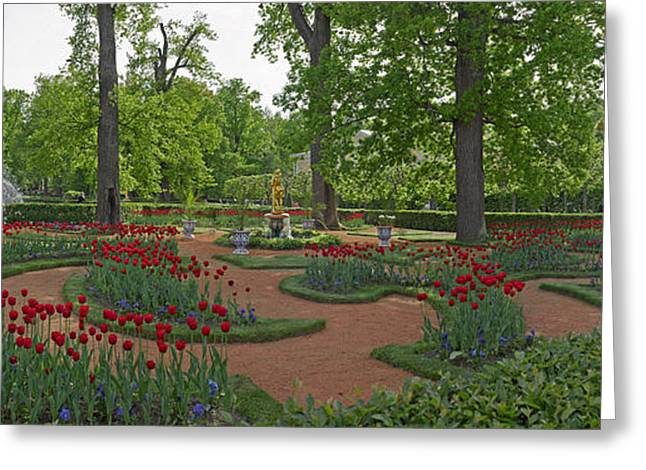 Summer Palace Greeting Cards - Garden Of The Catherine Palace Greeting Card by Panoramic Images