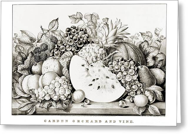 Pear Art Drawings Greeting Cards - Garden orchard and vine - 1867 Greeting Card by Pablo Romero
