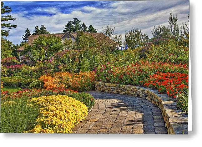 Garden Path Greeting Card by Jill Brooks