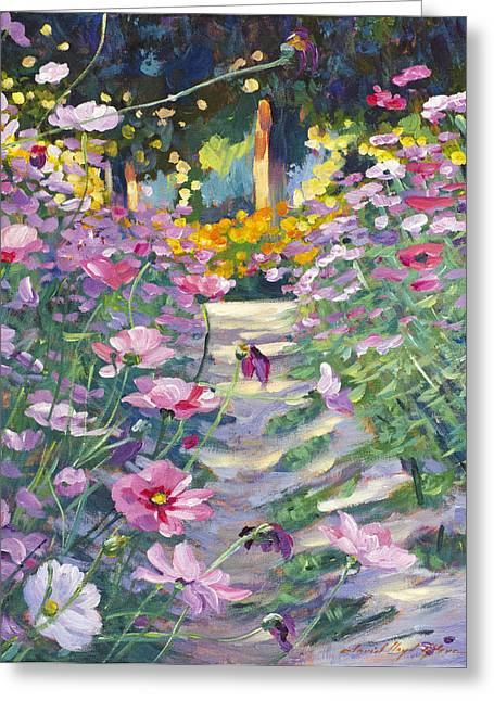 Cosmos Paintings Greeting Cards - Garden Path of Cosmos Greeting Card by David Lloyd Glover