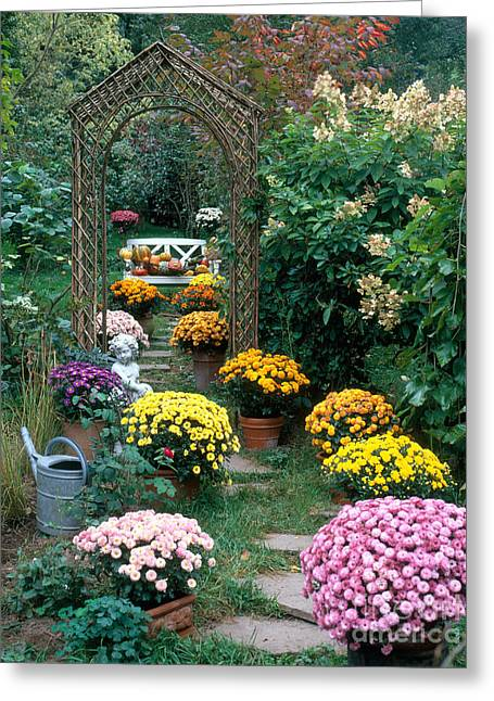 Garden Statuary Greeting Cards - Garden Path With Potted Plants Greeting Card by Hans Reinhard