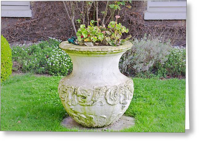 Pottery Greeting Cards - Garden pot Greeting Card by Tom Gowanlock