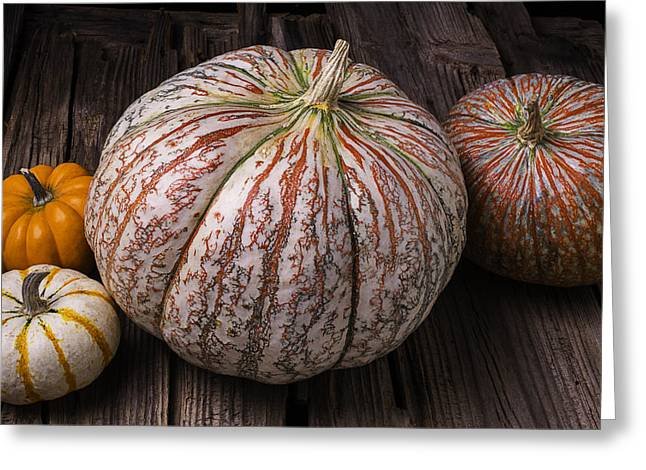 Ornamentation Greeting Cards - Garden Pumpkins Greeting Card by Garry Gay