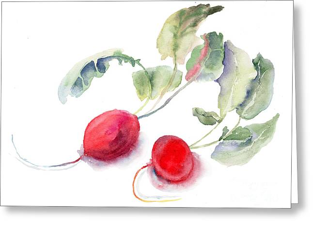 Red Radishes Greeting Cards - Garden radish Greeting Card by Regina Jershova