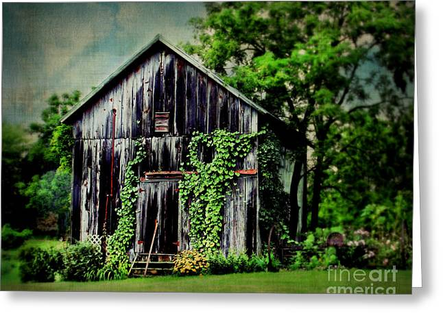 Shed Greeting Cards - Garden Shed Greeting Card by Perry Webster