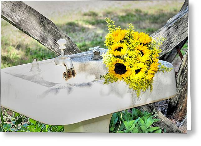 Pestal Greeting Cards - Garden Sink Greeting Card by Sonja Dover