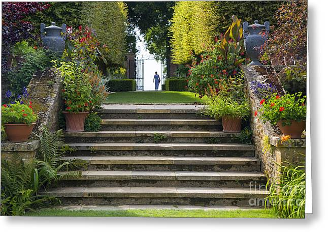 Stepping Stones Greeting Cards - Garden Steps Greeting Card by Brian Jannsen
