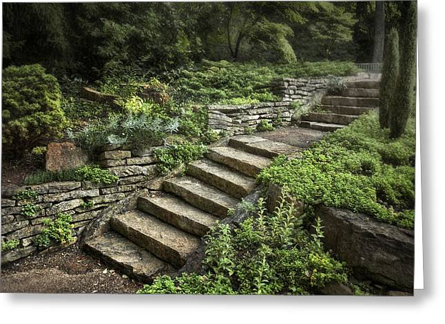 Stepping Stones Photographs Greeting Cards - Garden Steps Greeting Card by Tom Mc Nemar