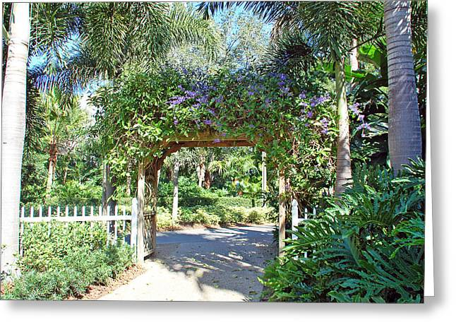 Garden Walkway Greeting Card by Aimee L Maher Photography and Art Visit ALMGallerydotcom