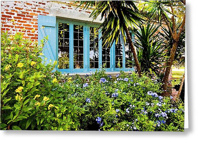 Garden Window Db Greeting Card by Rich Franco