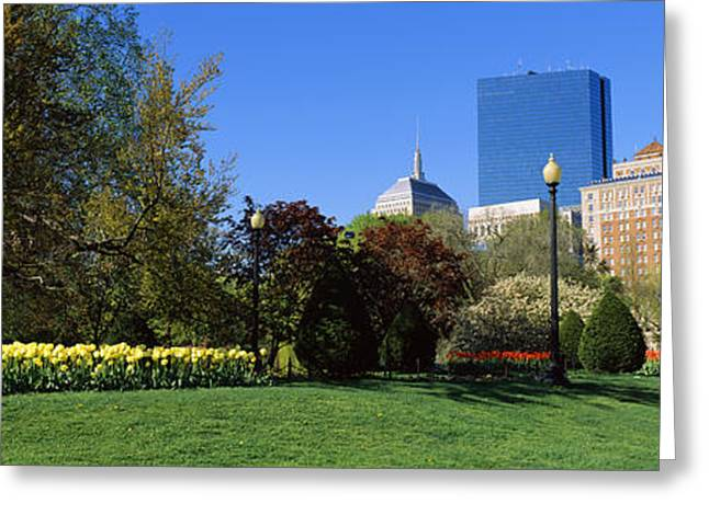 Public Garden Greeting Cards - Garden With Skyscrapers Greeting Card by Panoramic Images