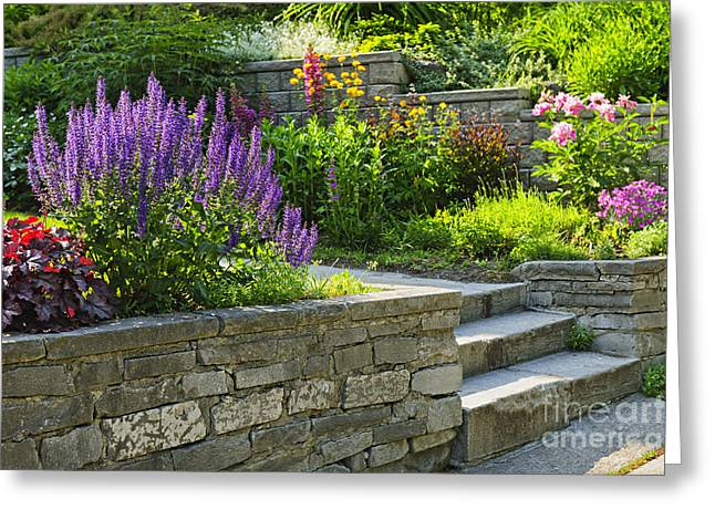 Stone Steps Greeting Cards - Garden with stone landscaping Greeting Card by Elena Elisseeva