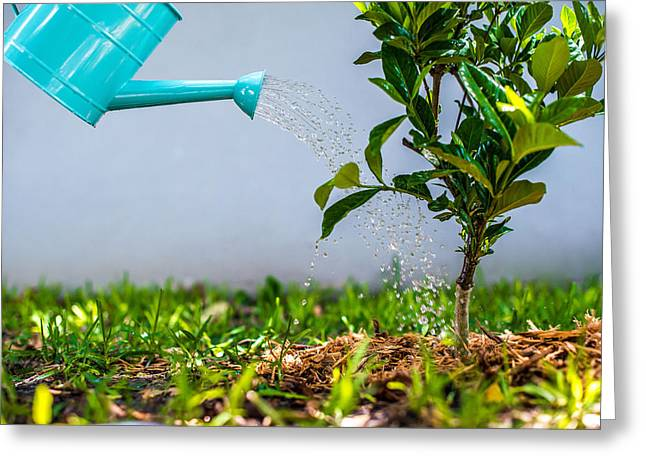 Sprinkling Can Greeting Cards - Garden Work Greeting Card by William  Carson Jr