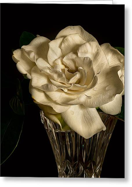 Gardenia Greeting Cards - Gardenia Greeting Card by Rick Barnard
