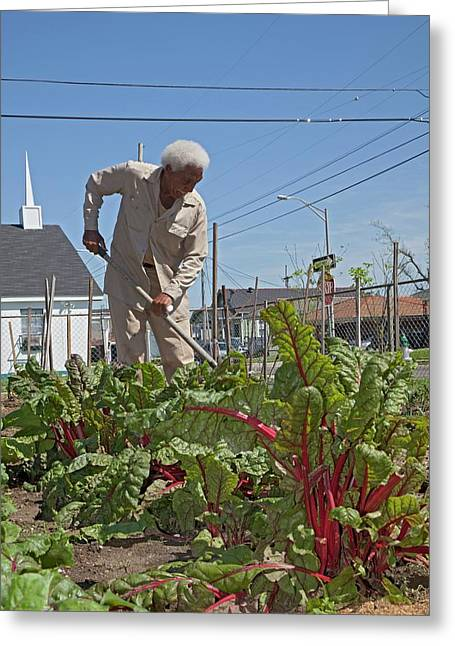 Gardening Greeting Card by Jim West
