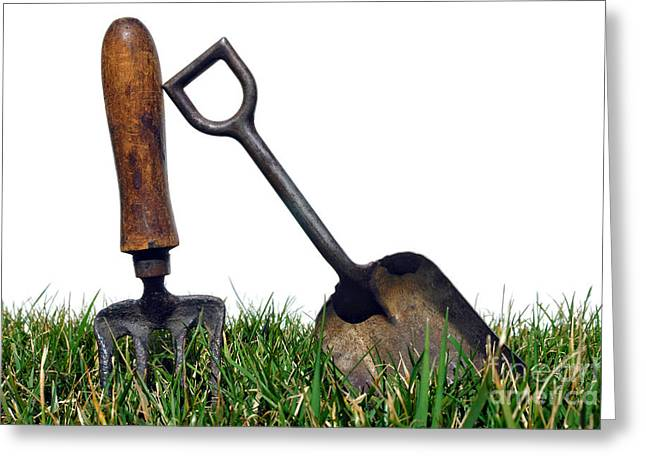 Gardening Greeting Cards - Gardening Tools Greeting Card by Olivier Le Queinec