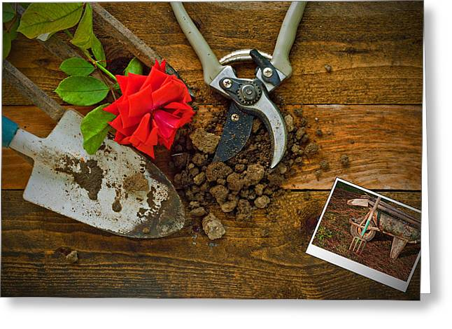 Potting Table Greeting Cards - Gardening tools on a rustic wooden table Greeting Card by Ken Biggs