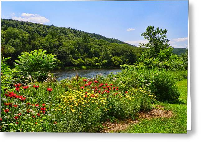Pamela Phelps Greeting Cards - Gardens along the Delaware River Greeting Card by Pamela Phelps