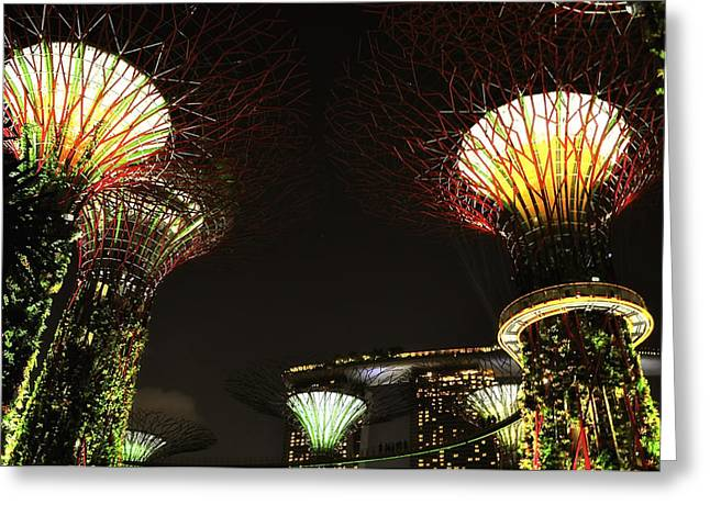 Garden Show Greeting Cards - Gardens by the Bay in Singapore Greeting Card by Mountain Dreams