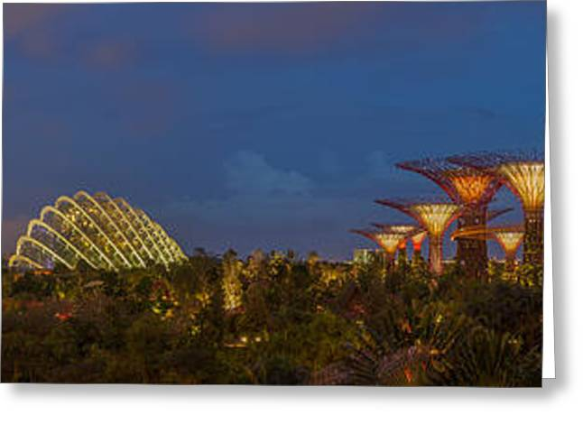 Garden Show Greeting Cards - Gardens by the Bay Greeting Card by Jennifer Grover